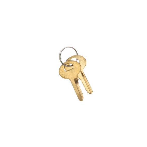 Keyed Trigger Lock
